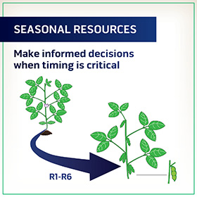 Seasonal Resources R1 to R6